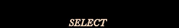MVST Select